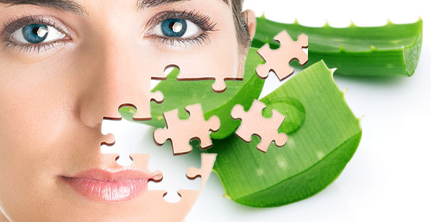 Aloe Vera based products have a good demand