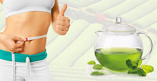Green Tea burns fat and increases body metabolism thereby reducing weight