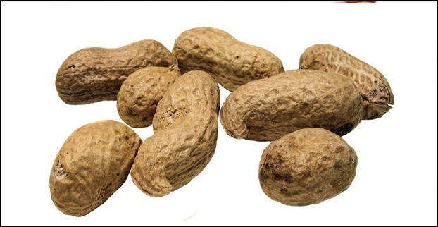 Peanuts also trigger food allergy in some people
