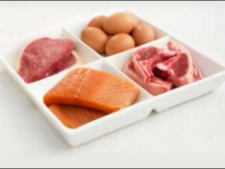 Animal products are rich in B12 vitamin