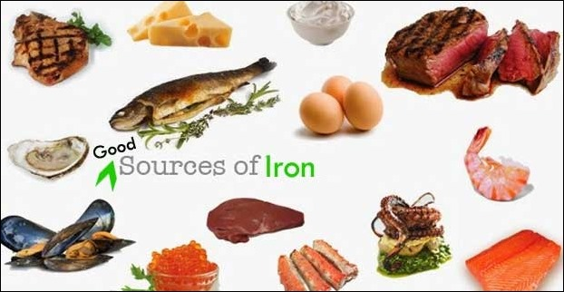 Best Sources of Iron in Diet